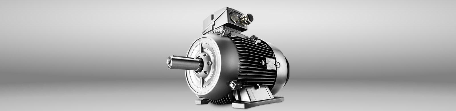 IEC Electric Motors