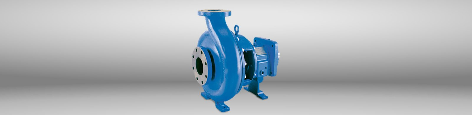 ANSI Process Pumps